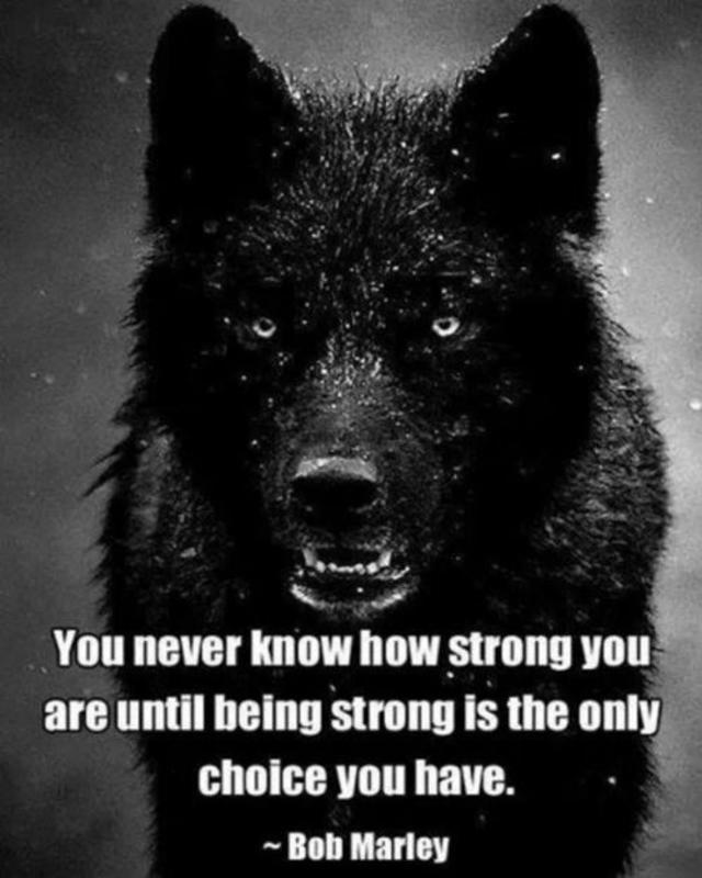 #staypositive #strong #grind