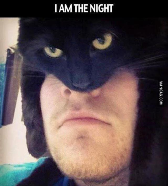 Nananananana Catman!