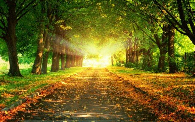#nice #road
